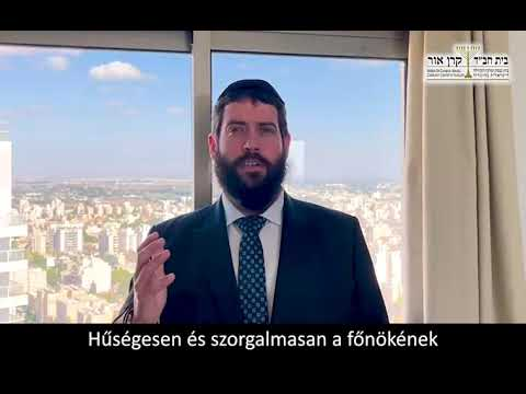 Zsidó ember zsidó módon házasodjon – Raskin Rabbi, Budapest (Ki técé hetiszakasz)