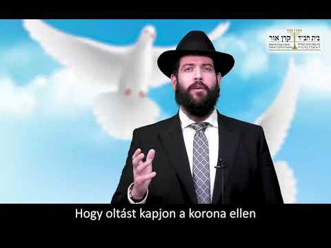 Emlékezzünk a jó cselekedetekre, tetteinkkel is – Raskin rabbi, Budapest (Lech löchá hetiszakasz)